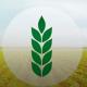 aumentar o lucro da fazenda